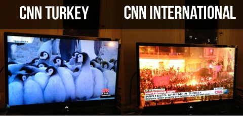 CNN International shows live coverage of the demonstrations in Taksim Square, while CNN Türk airs a penguin documentary.